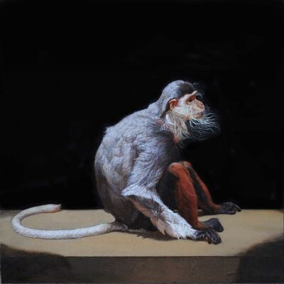 Patricia Traub, 'The Last Captive Douc Langur', 2016
