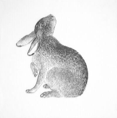 Chen Chun-Hao, 'Rabbit ', 2015