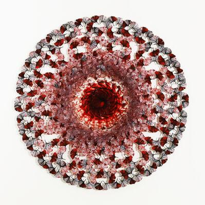 Annalù Boeretto, 'Dreamcatcher - red ginkgo', 2021