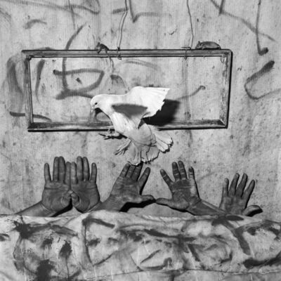 Roger Ballen, 'Five hands', 2010