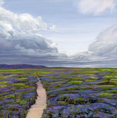 Mary-Austin Klein, 'Carrizo Plain Blooms', 2018