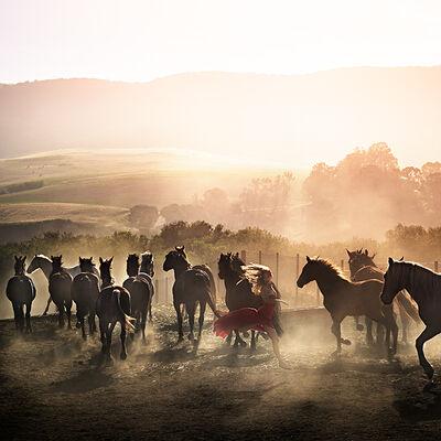 David Drebin, 'Running Wild', 2014