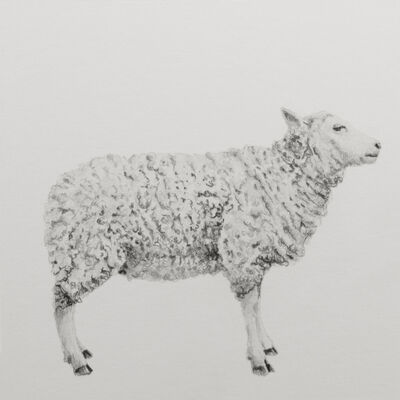 "Carlos Alarcón, '""Lamb"" from the series ""Paradoxes""', 2018"