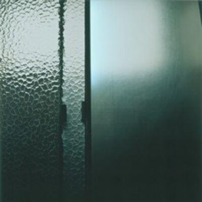 Elisa Sighicelli, 'Iceland: Shower Door', 2001