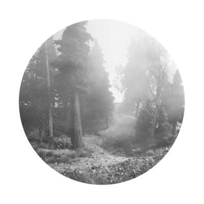 Bill Finger, 'Trail Head II', 2015