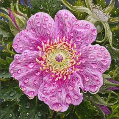 Eric Wert, 'Wild Rose', 2021