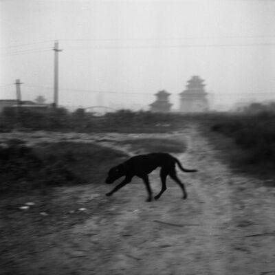Tian Ye, 'Wandering Slowly 12 [慢慢的游走 12]', 2002-2005
