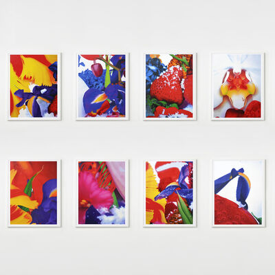 Marc Quinn, 'Portraits of Landscapes (Portfolio of 8)', 2007