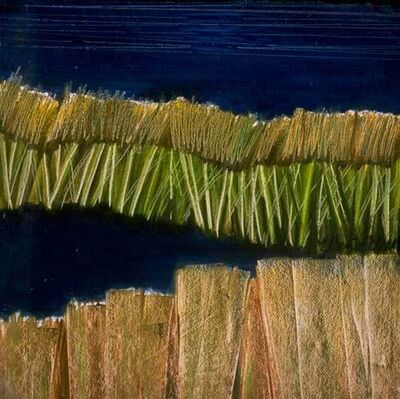 "Ellen Sinel, 'Grasses Series: ""Black Pond #3"" (dimensions provided are without frame)'"