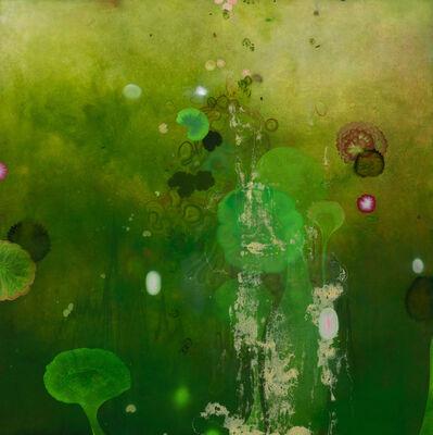 Darren Waterston, 'Persephone's Garden ', 2019