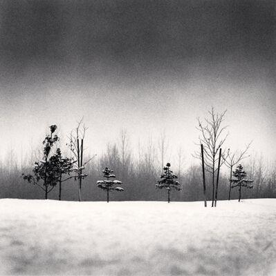 Michael Kenna, 'Small Trees, Anchorage, Alaska, USA', 1989
