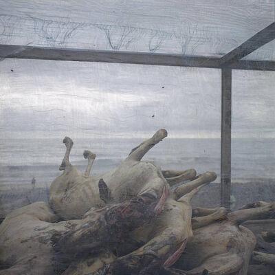 Denis Dailleux, 'Carcasses de chèvres', 2014