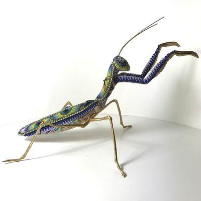 Jan Huling, 'Baby Das Bug', 2021