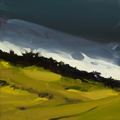 Susan Headley Van Campen, 'Dark Sky over the Back Fields, Oyster River Farm', 2020