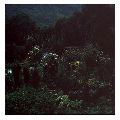Cristina Fontsare, 'Backyard - Contemporary, Polaroid, Photograph, Figurative, Childhood, 21st Century', 2014