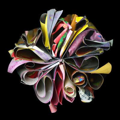 Cara Barer, 'Cendrillon', 2009