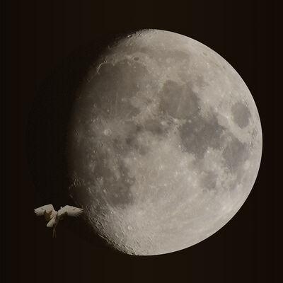 KAZZ MORISHITA, 'Fly To The Moon Ⅱ', 2015
