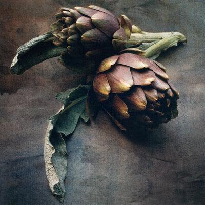 Cy DeCosse, 'Springtime Artichokes'