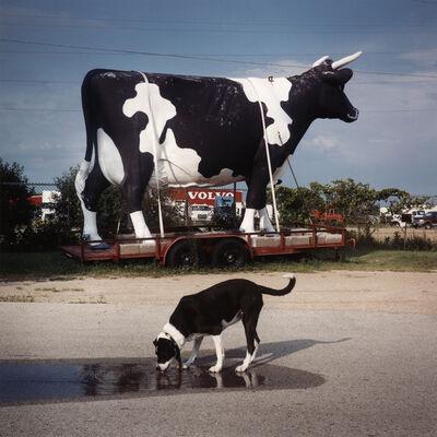 David Graham, 'South of Osh Kosh, WI', 2003