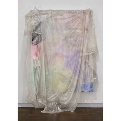 David Hammons, 'Untitled ', 2010
