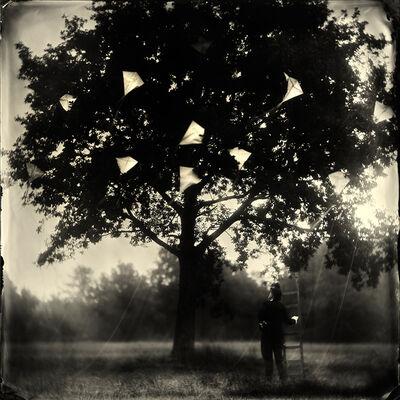 Alex Timmermans, 'The Kite Runner'