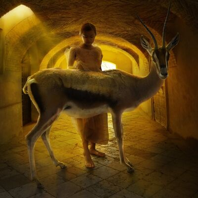 Tom Chambers, 'Tunnel Vision ', 2013