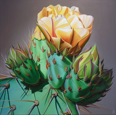 "Dyana Hesson, '""Arizona Gold, Prickly Pear Bloom and Bud, Desert Botanical Garden""', 2019"