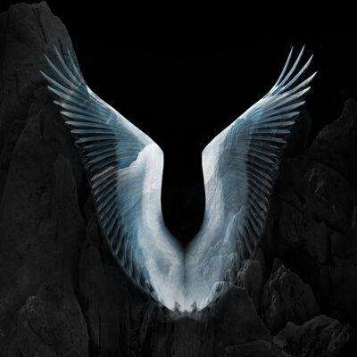 Eriko Kaniwa, 'Wings #5', 2019