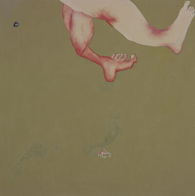 Thordis Adalsteinsdottir, 'Feet and Footsteps', 2012