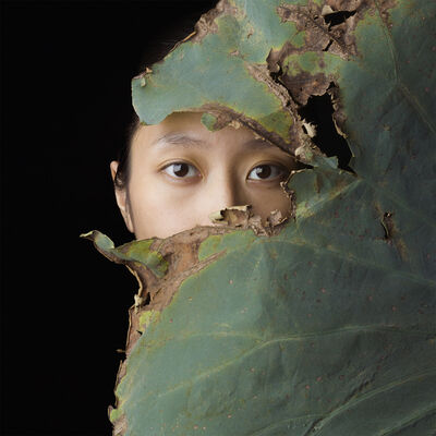 Jean-Baptiste Huynh, 'HUYEN - Lotus', 2015