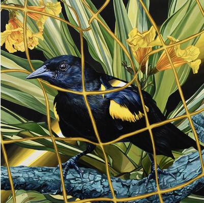 Juan Travieso, 'Endangered Birds #180', 2019