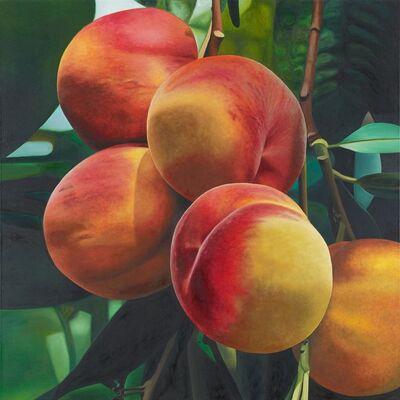 Karin Kneffel, 'Pfirsiche', 1995