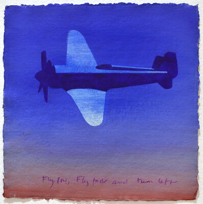 Antony Donaldson, 'Fly Low, Fly Fast and Turn left', 2009