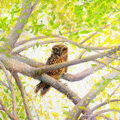 Iris Scott, 'Indian Owl Spotted', 2020