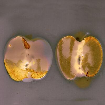 Kelly Cowan, 'Apples', 2019