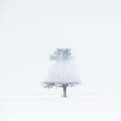 JEAN-MICHEL LENOIR, 'Signature de I'hiver', 2018