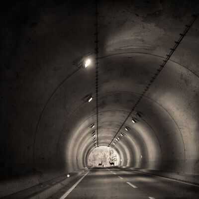 Keith Carter, 'Tunnel', 2019