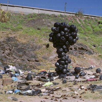 Cinthia Marcelle, 'Environmental impact', 2013
