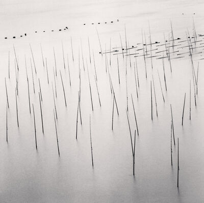 Michael Kenna, 'Seaweed Farms, Study 9, Xiapu, Fujian, China', 2010
