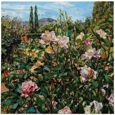 Nicholas Harding, 'Tumbarumba garden landscape', 2015
