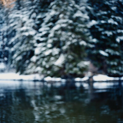 Debra Bloomfield, 'Wilderness 02337-3-09', 2009