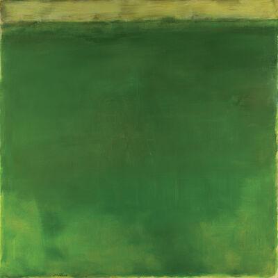 Ercole Monti, 'Tutto Verde', 2009