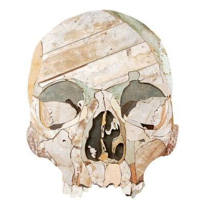 Diederick Kraaijeveld, 'Large Skull', 2013