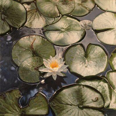 Jeffrey Vaughn, 'Sunlit Water Lily', 2019