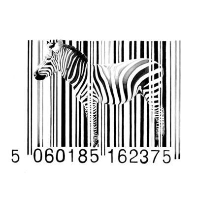 Day-z, 'Zebra', 1075