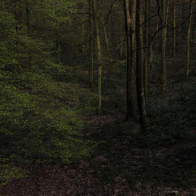 """Didier Goupy, 'Fondation 23 """"le prémontoire du silence""""', 2020"""