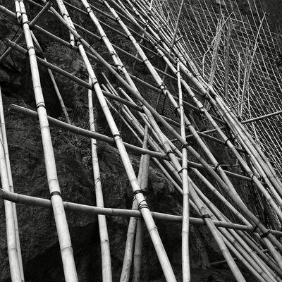 Peter Steinhauer, 'Bamboo Trellis #2, Hong Kong - 2009', 2009