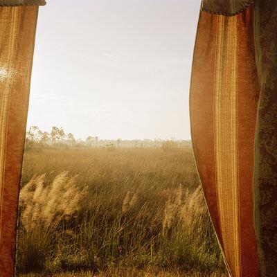 Rebecca Reeve, 'Marjory's World #8', 2012