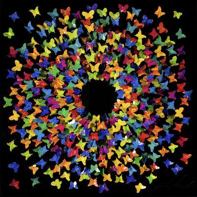 Joel Amit, 'Sun - Multicolor Butterflies on Black', NA