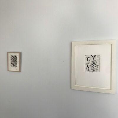 Vija Celmins and Brice Marden - Prints, installation view